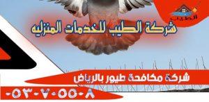 مكافحة طيور